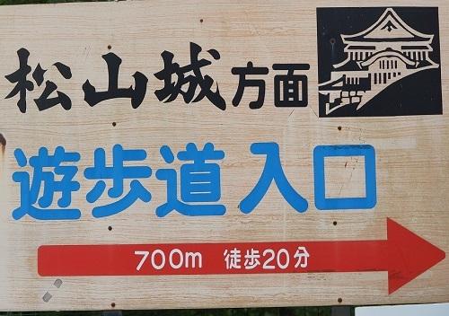 DSC00537.jpg